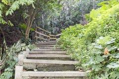 Empty Stairway Royalty Free Stock Photo
