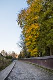 Empty stone road on the old town with colorful trees during fall Royalty Free Stock Photo