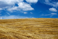 Empty straw field Royalty Free Stock Photos