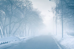 Empty street in fog in mysterious city Stock Image