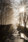 Empty street at morning Royalty Free Stock Photography