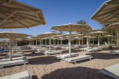 Empty sun loungers on the beach. In naama bay, sharm el sheikh, egypt, the image is shot in January 2013 Stock Images