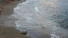 Empty sunbeds on a beach. Empty sunbeds standing on a beach by a blue sea stock video
