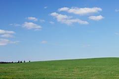 Empty sunny landscape, background. Empty sunny landscape, blue sky, green grass, nice background Royalty Free Stock Photos
