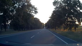 Empty Sunny Road Driving 30s