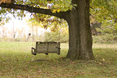 Empty Swing. An empty swing hanging from a tree on an abandoned farm royalty free stock photos