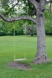 Empty swing. Empty rope swing on an elm tree Stock Photos