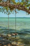 Empty Swing on sea Stock Image