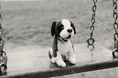 Empty swings. The Lost Child. Black and white image. royalty free stock image