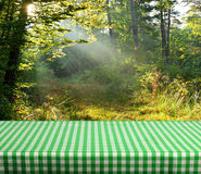 Empty table. Empty gingham table with forest background. Ready for product display montage Royalty Free Stock Photo