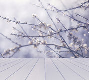 Empty table with blurred flowering branches background, for product display template Royalty Free Stock Photography