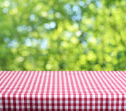 Empty table. And defocused fresh green background Royalty Free Stock Images
