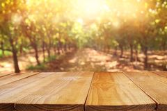 Empty table in front of blurry autumn background. Ready for product display montage.  stock images