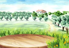 Empty table in Landscape with olive grove. Watercolor hand. Drawn background Royalty Free Stock Photography