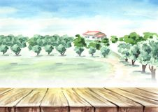 Empty table in Landscape with olive grove. Watercolor hand. Drawn background Royalty Free Stock Photos