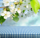 Empty table. Spring gingham table for product display montages Royalty Free Stock Photography