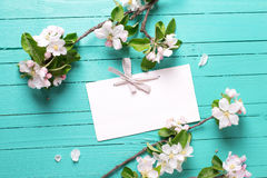 Empty tag and apple tree flowers on bright  turquoise  wooden ba Royalty Free Stock Photography
