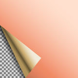 Empty tag de cobre ondulado do vetor da placa da folha Foto de Stock Royalty Free