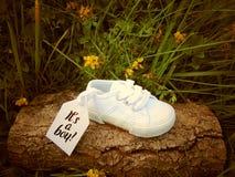 Empty tag sur la petite chaussure de bébé avec des fleurs/annonce de grossesse images libres de droits