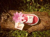 Empty tag sur la petite chaussure de bébé avec des fleurs/annonce de grossesse photos stock