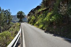 Gran Canaria road. Empty tar road in Gran Canaria island, Spain stock photo