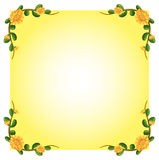 An empty template with a flowering plant border design Royalty Free Stock Photo