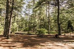 Empty tent camper Campground Lake of two rivers Algonquin National Park Beautiful natural forest landscape Canada Royalty Free Stock Photos