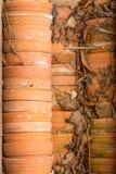 Empty terracotta pots Royalty Free Stock Photo