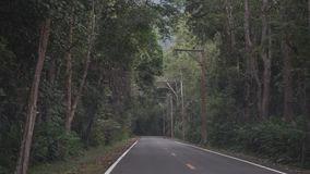 Empty Thai rural jungle road. First person view stock footage