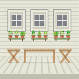 Empty Three Benches On Wood Wall And Ground With Pot Plants Royalty Free Stock Photos