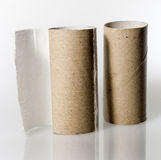 Empty toilet paper roll without paper Royalty Free Stock Photo