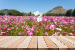 Empty top wooden table and flower field blurred background Stock Photography