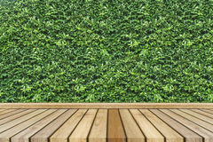 Empty top wooden table and green leave texture on background. Can use for product display Royalty Free Stock Photography