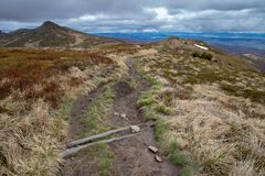 Empty trail in the mountains of central europe. A path leading high in the mountains. Spring time royalty free stock photo