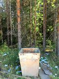 An empty trash can is in the forest stock photo