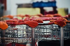 Empty trolley for passengers isolated object photograph royalty free stock image