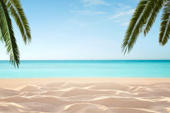 Empty, tropical beach stock images