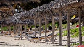 The empty tropical beauty beach. Cuba stock video