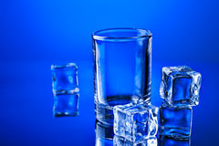 Empty tumbler with ice cubes Stock Images