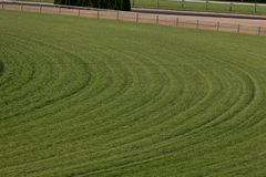 Turf Horse Racing Track. Empty turf horse racing track stock photography