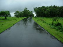 Empty Village Road. Empty and wet Road Stock Image