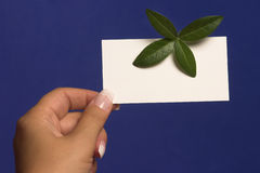 Empty visiting-card in palm. On blue background Royalty Free Stock Image
