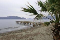 Empty. Walking dog on the beach of Marmaris, Turkey stock photo