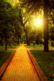 Empty walkway in park Royalty Free Stock Photo