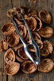 Empty walnut shells Stock Images