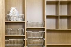 Empty wardrobe. With regiments and wire baskets and a white cat Stock Photography