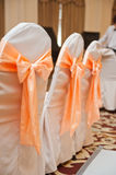 Empty wedding chairs elegantly decorated Royalty Free Stock Photo