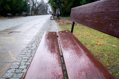 Empty wet brown bench, empty pathway in the park in Warsaw, Poland, blurred background. Empty wet brown bench in the park in Warsaw, Poland, blurred background royalty free stock photos