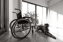Empty wheelchair Royalty Free Stock Photography