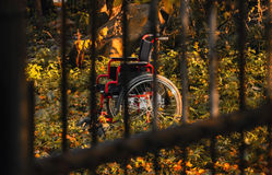 Empty wheelchair in untidy garden at sunset, shot through the bars Royalty Free Stock Photos